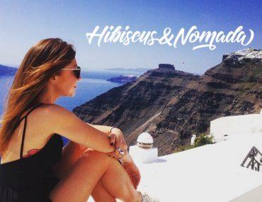 Hibiscus and Nomada